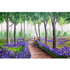 Image of Walk Through The Bluebells