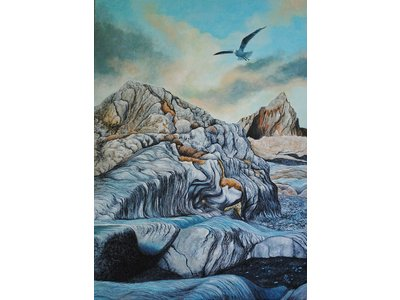 Pat Harrison - These colourful rocks can be found in North Devon. The seagull gives us an idea of scale.  Signed limited edition print of 100. Overall size of the mount 30x40cm. Image size 20x30cm. Other sizes up to 40x60cm poster prints included in the limited edition or commissioned work or similar original available upon enquiry.
