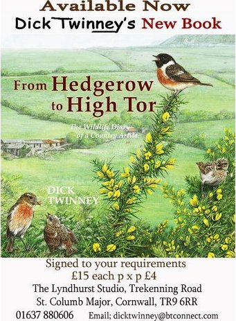 Image of Hedgerow to High Tor