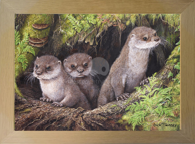 Image of Otter Cubs & Ground Beetle
