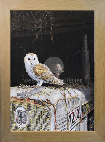 Image of Classic Perch - Barn Owl and Mike's Tractor. 1968 David Brown 1200, Tregaswith, St. Columb Major, Cornwall
