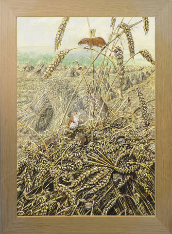 Image of Harvest Mice & Love Token