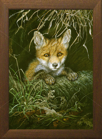 Image of Taking Stock, Fox Cub - Halveor, St. Columb Major, Cornwall