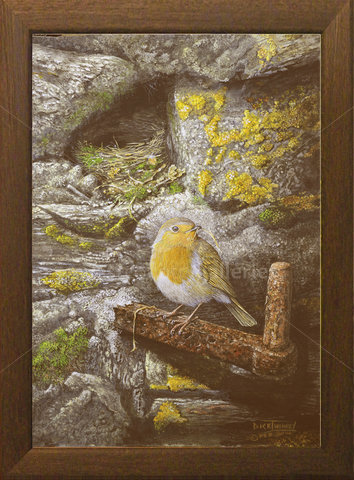 Image of The Nest Builder, Robin - Trewan Hall, St. Columb Major, Cornwall