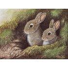 Image of A - Rabbits in the Sand Dunes - SOLD