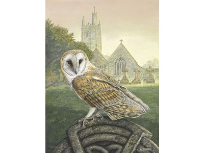 Dick Twinney - A signed and numbered limited edition of 75 prints Features: A barn owl on a Celtic Cross in St. Mawgan in Pydar churchyard, Nr. Newquay, Cornwall.