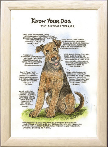Image of The Airedale Terrier