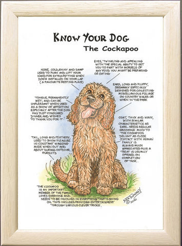 Image of The Cockapoo