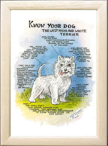 Image of The West Highland White Terrier (Westie)