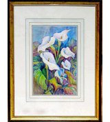 Image of Arum Lilies