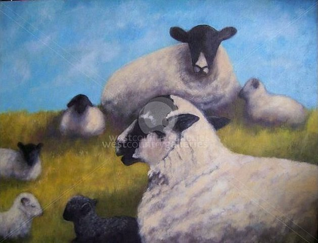Image of Hilltop Sheep - Limited Edition print on canvas.