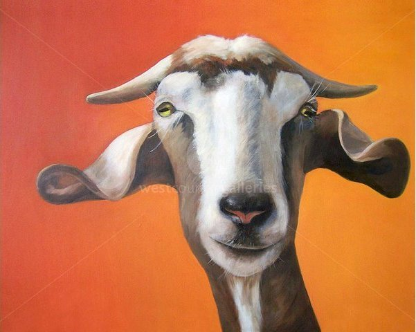 Image of Goat - Limited Edition prints on box canvas