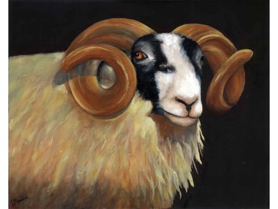 Laila Meadows - Head and shoulders of horned Ram.  Original oil  £ 135