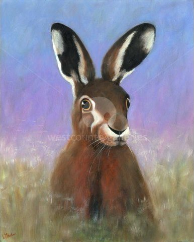 Image of Red Hare
