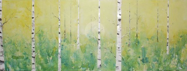 Image of Silver birch