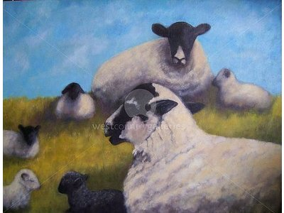 Hilltop Sheep - Limited Edition print on canvas.
